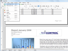 TX Text Control ActiveX Server