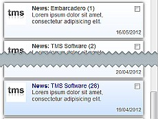 TMS IntraWeb Component Pack Pro授权购买