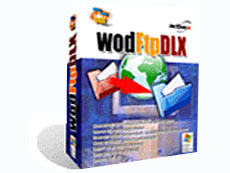 wodFtpDLX ActiveX component