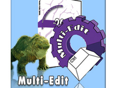 Multi-Edit