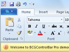 BCGSoft Professional Editor授权购买