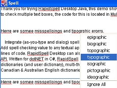 RapidSpell Desktop Java
