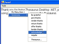 Thesaurus Desktop .NET